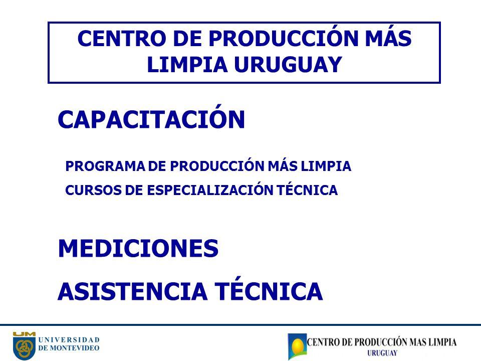 CENTRO DE PRODUCCIÓN MÁS LIMPIA URUGUAY CAPACITACIÓN MEDICIONES ASISTENCIA TÉCNICA PROGRAMA DE PRODUCCIÓN MÁS LIMPIA CURSOS DE ESPECIALIZACIÓN TÉCNICA