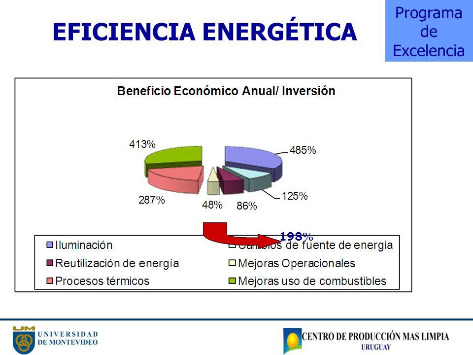 EFICIENCIA ENERGÉTICA Programa de Excelencia 198%