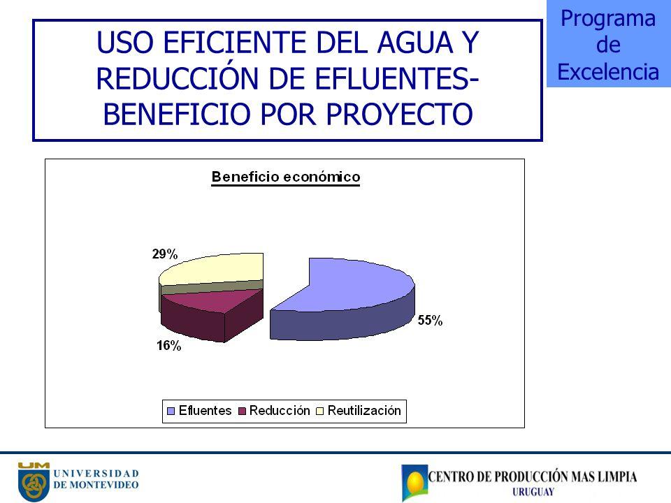 USO EFICIENTE DEL AGUA Y REDUCCIÓN DE EFLUENTES- BENEFICIO POR PROYECTO Programa de Excelencia