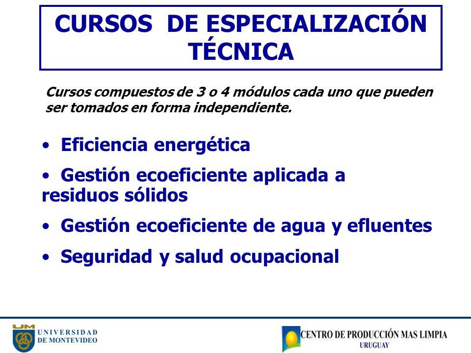 CURSOS DE ESPECIALIZACIÓN TÉCNICA Eficiencia energética Gestión ecoeficiente aplicada a residuos sólidos Gestión ecoeficiente de agua y efluentes Segu