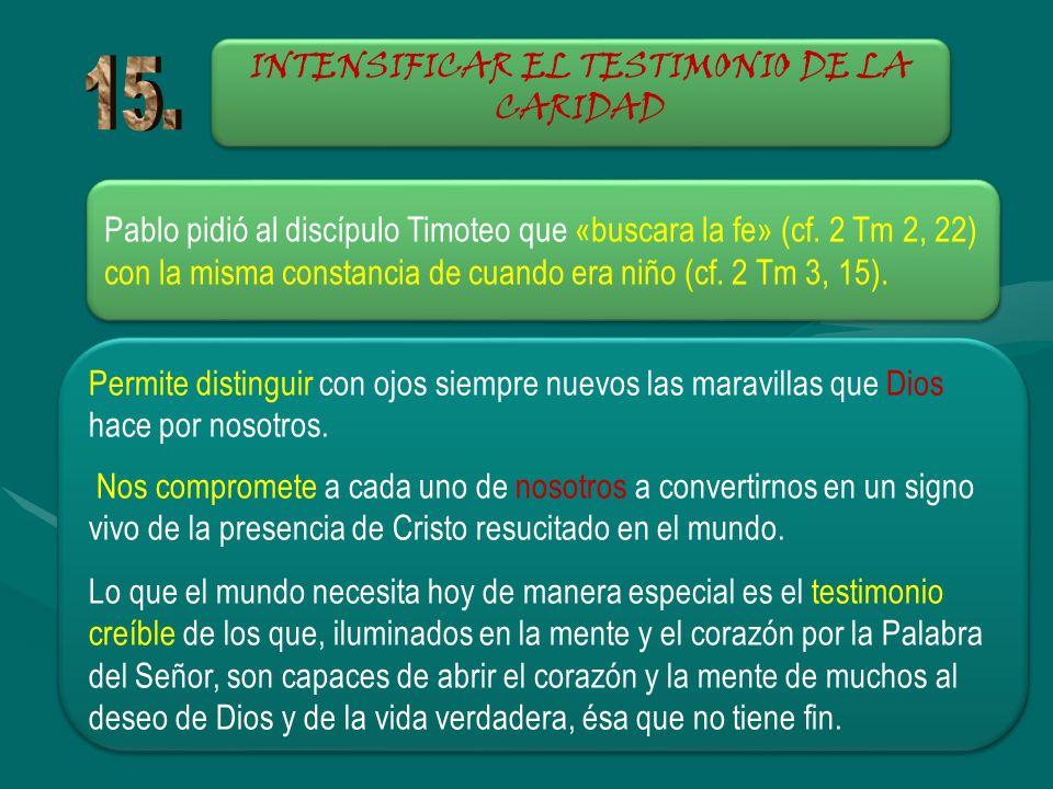 INTENSIFICAR EL TESTIMONIO DE LA CARIDAD Pablo pidió al discípulo Timoteo que «buscara la fe» (cf. 2 Tm 2, 22) con la misma constancia de cuando era n