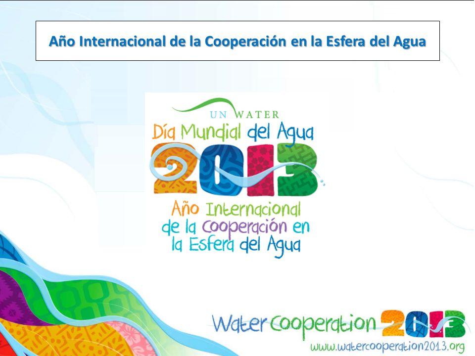 Diciembre 2010: La Asamblea General de las Naciones Unidas (AGNU) declaró 2013 como el Año Internacional de las Naciones Unidas de la Cooperación en la Esfera del Agua.