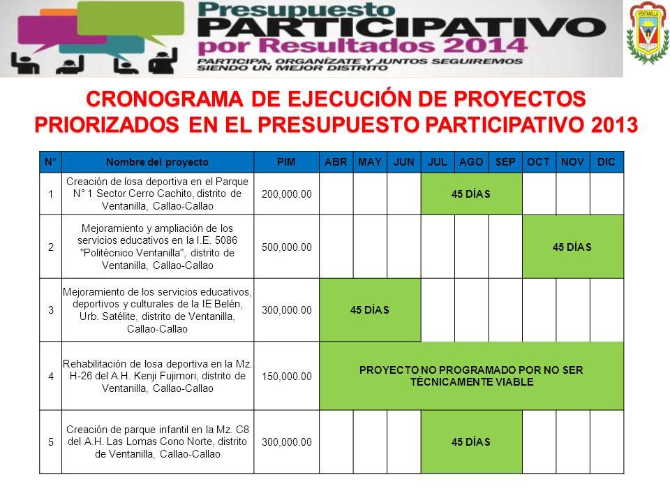 CRONOGRAMA DE EJECUCIÓN DE PROYECTOS PRIORIZADOS EN EL PRESUPUESTO PARTICIPATIVO 2013 N°Nombre del proyectoPIMABRMAYJUNJULAGOSEPOCTNOVDIC 1 Creación d