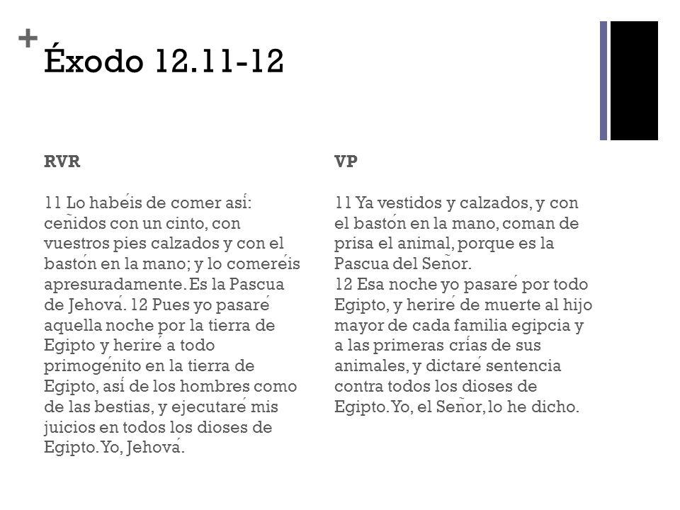+ Éxodo 12.11-12 RVR 11 Lo habeis de comer asi: cen ̃ idos con un cinto, con vuestros pies calzados y con el baston en la mano; y lo comereis apresuradamente.
