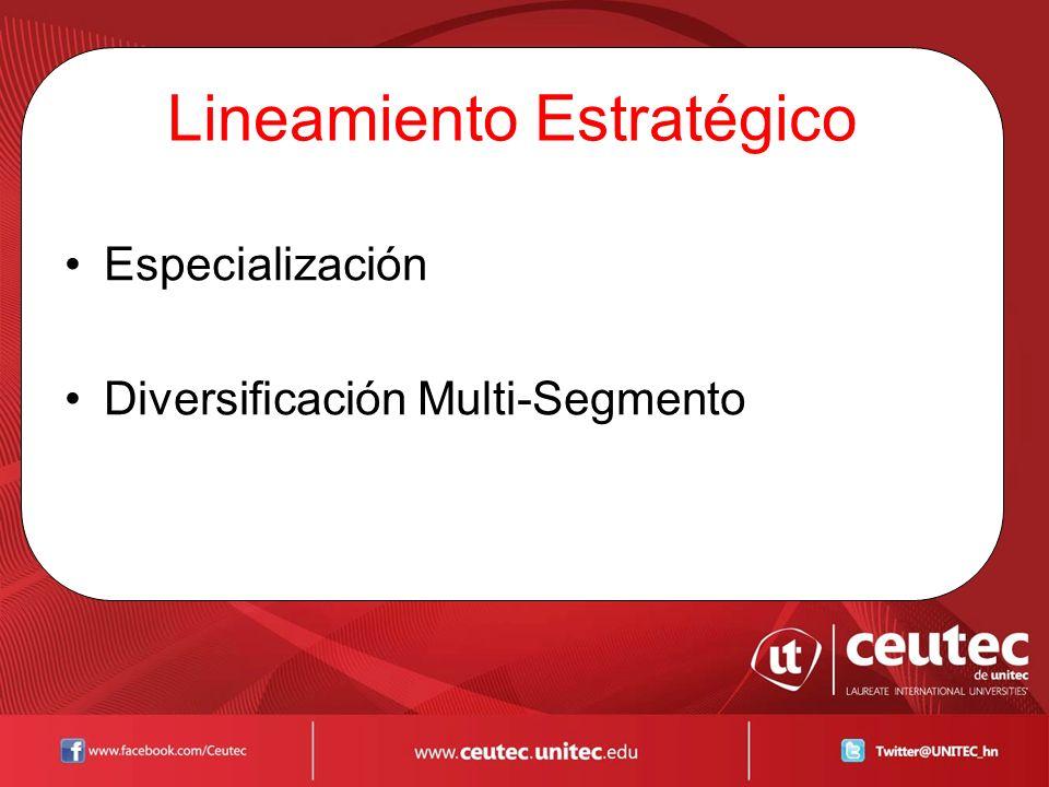 Lineamiento Estratégico Especialización Diversificación Multi-Segmento