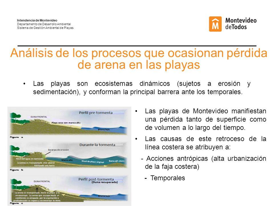 Análisis de los procesos que ocasionan pérdida de arena en las playas Las playas son ecosistemas dinámicos (sujetos a erosión y sedimentación), y conforman la principal barrera ante los temporales.
