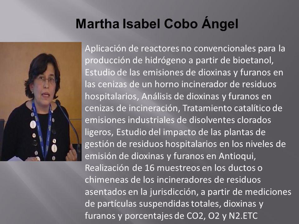 Martha Isabel Cobo Ángel Aplicación de reactores no convencionales para la producción de hidrógeno a partir de bioetanol, Estudio de las emisiones de