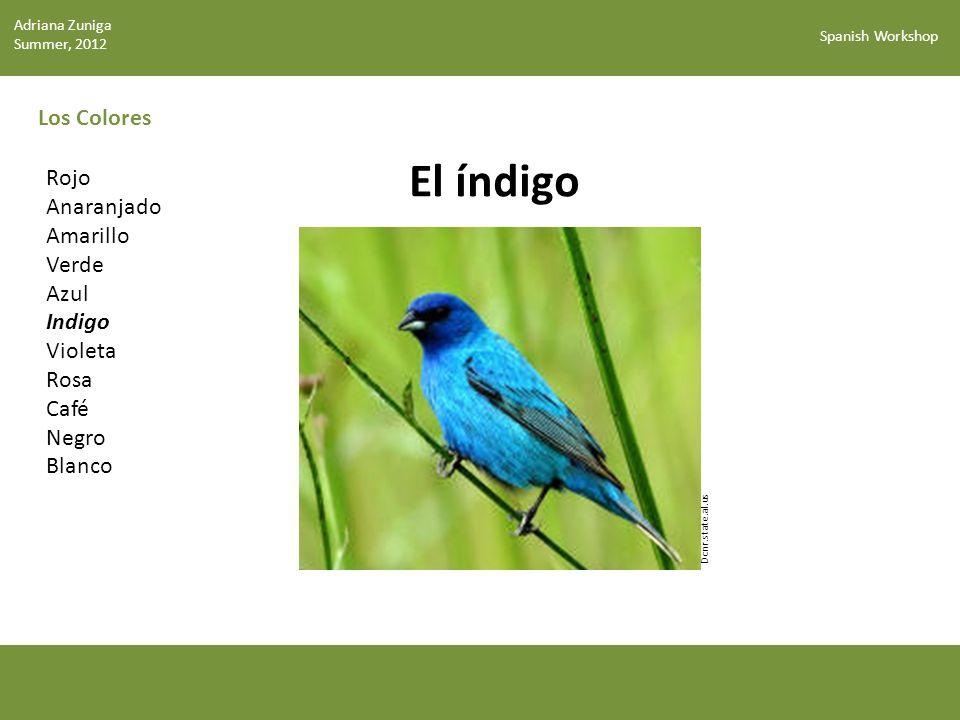 Spanish Workshop Los Colores El índigo Dcnr.state.al.us Rojo Anaranjado Amarillo Verde Azul Indigo Violeta Rosa Café Negro Blanco Adriana Zuniga Summer, 2012