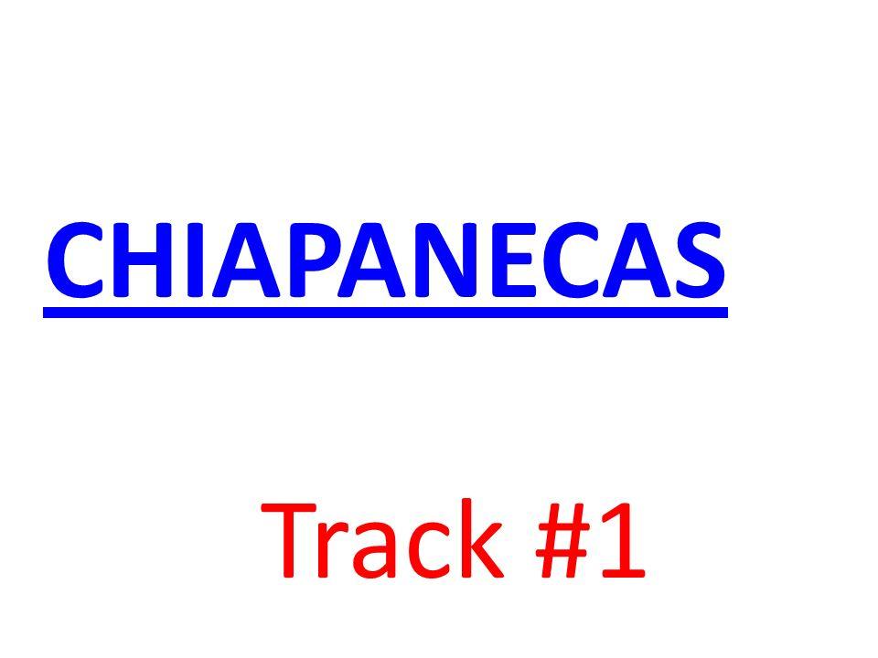 CHIAPANECAS Track #1