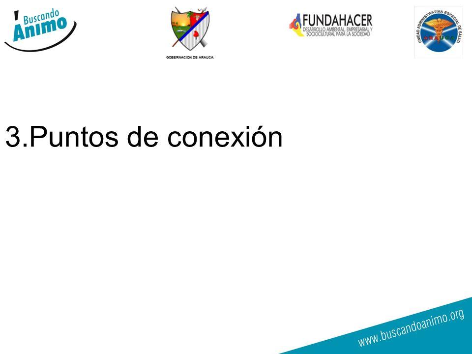 GOBERNACION DE ARAUCA 3.Puntos de conexión