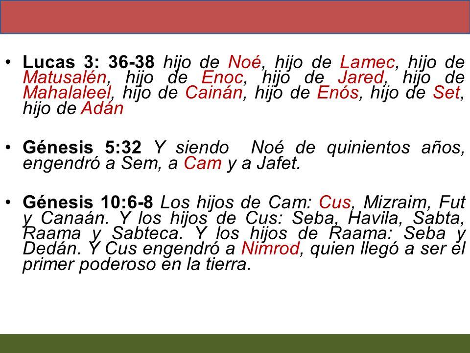 Lucas 3: 36-38 hijo de Noé, hijo de Lamec, hijo de Matusalén, hijo de Enoc, hijo de Jared, hijo de Mahalaleel, hijo de Cainán, hijo de Enós, hijo de S