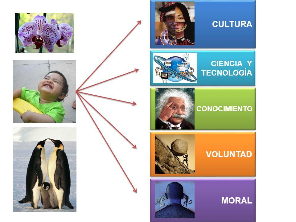 MORAL VOLUNTAD CONOCIMIENTO CIENCIA Y TECNOLOGÍA CIENCIA Y TECNOLOGÍA CULTURA