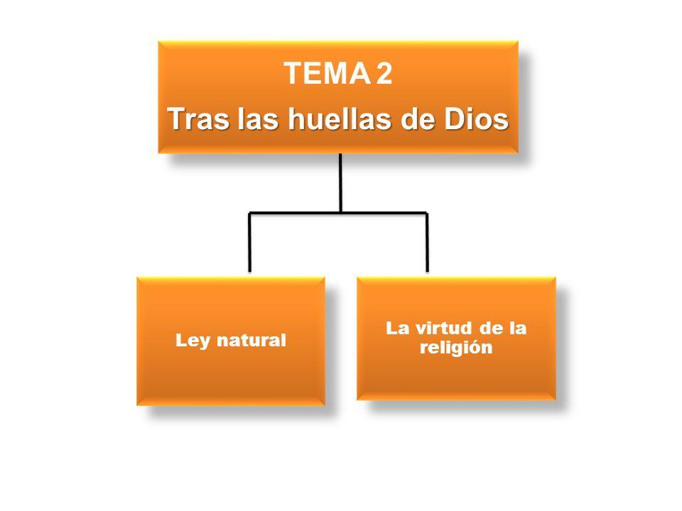 TEMA 2 Tras las huellas de Dios Ley natural La virtud de la religión