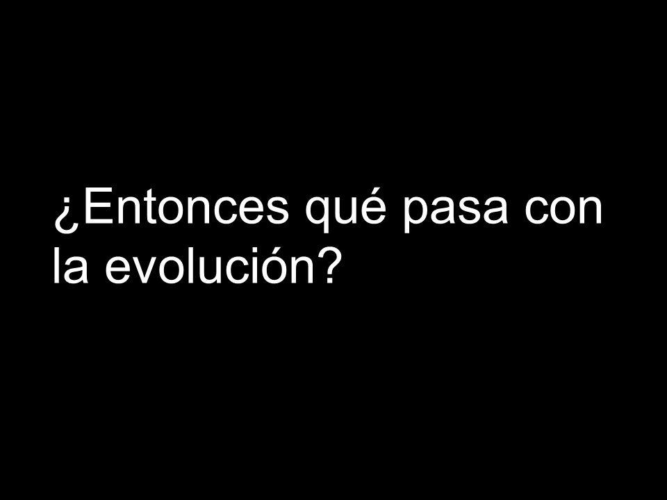 ¿Entonces qué pasa con la evolución?