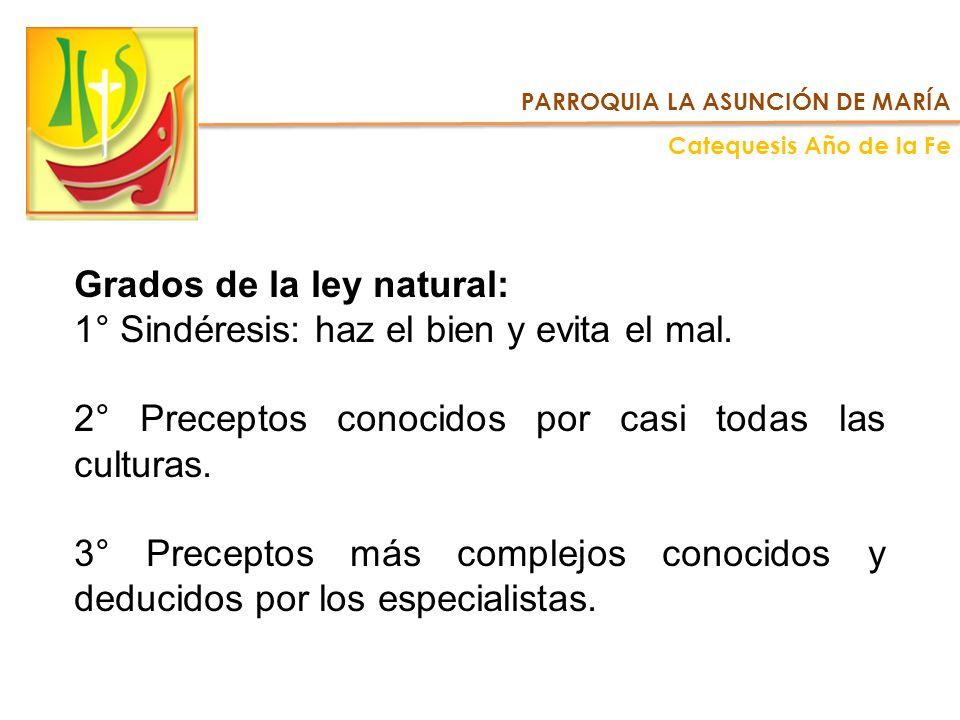 Grados de la ley natural: 1° Sindéresis: haz el bien y evita el mal. 2° Preceptos conocidos por casi todas las culturas. 3° Preceptos más complejos co