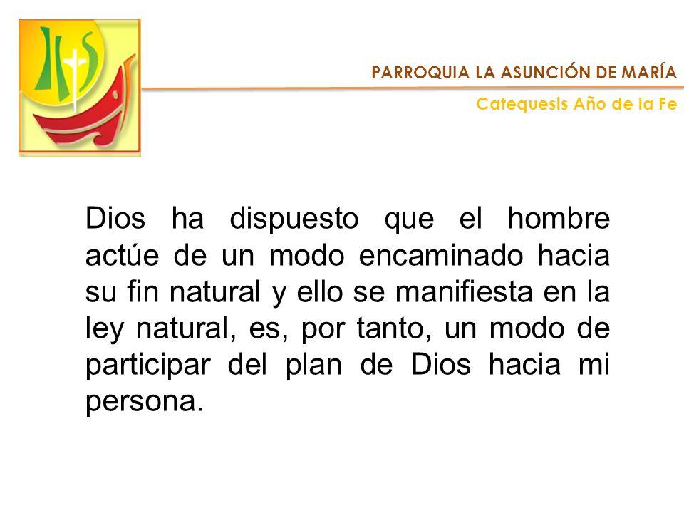 PARROQUIA LA ASUNCIÓN DE MARÍA Catequesis Año de la Fe Dios ha dispuesto que el hombre actúe de un modo encaminado hacia su fin natural y ello se mani