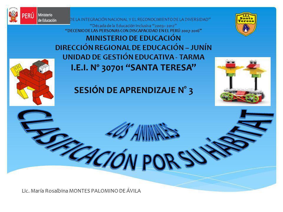 AÑO DE LA INTEGRACIÓN NACIONAL Y EL RECONOCIMIENTO DE LA DIVERSIDAD Década de la Educación Inclusiva 2003– 2012 DECENIO DE LAS PERSONAS CON DISCAPACID