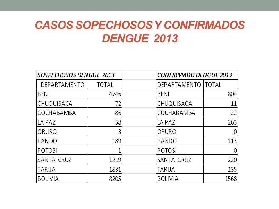 CASOS SOPECHOSOS Y CONFIRMADOS DENGUE 2013
