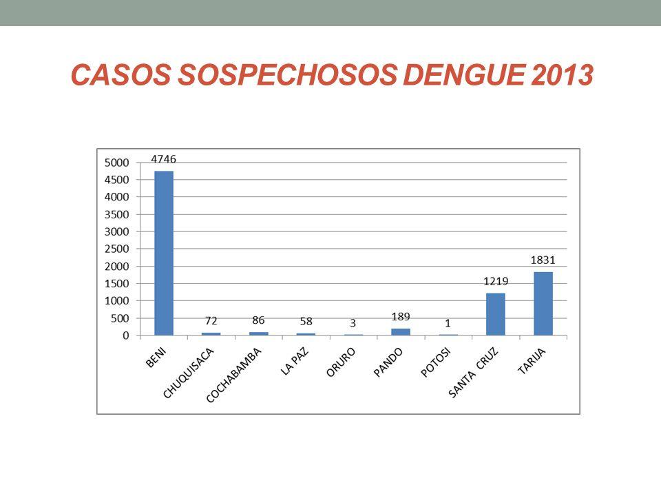 CASOS SOSPECHOSOS DENGUE 2013