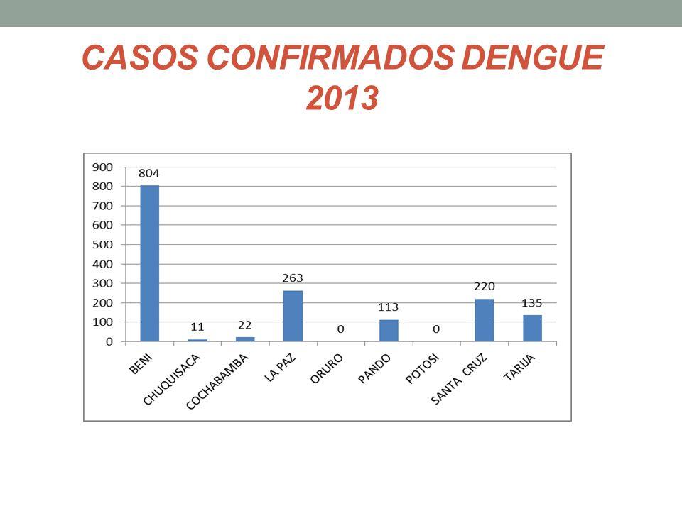 CASOS CONFIRMADOS DENGUE 2013