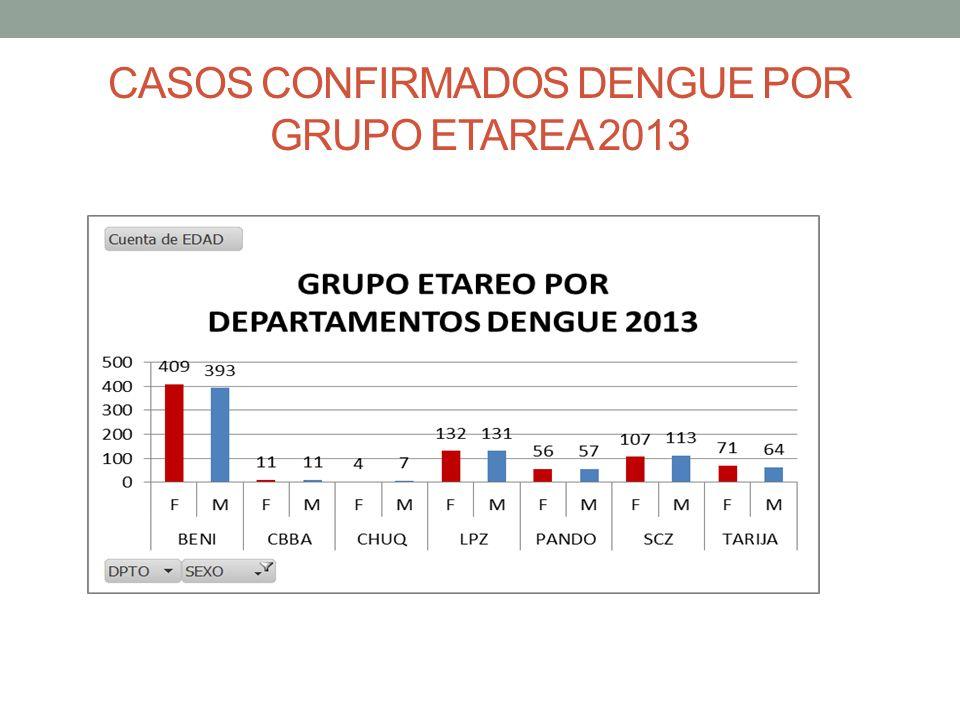 CASOS CONFIRMADOS DENGUE POR GRUPO ETAREA 2013