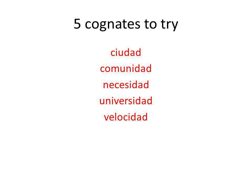 5 cognates to try ciudad comunidad necesidad universidad velocidad