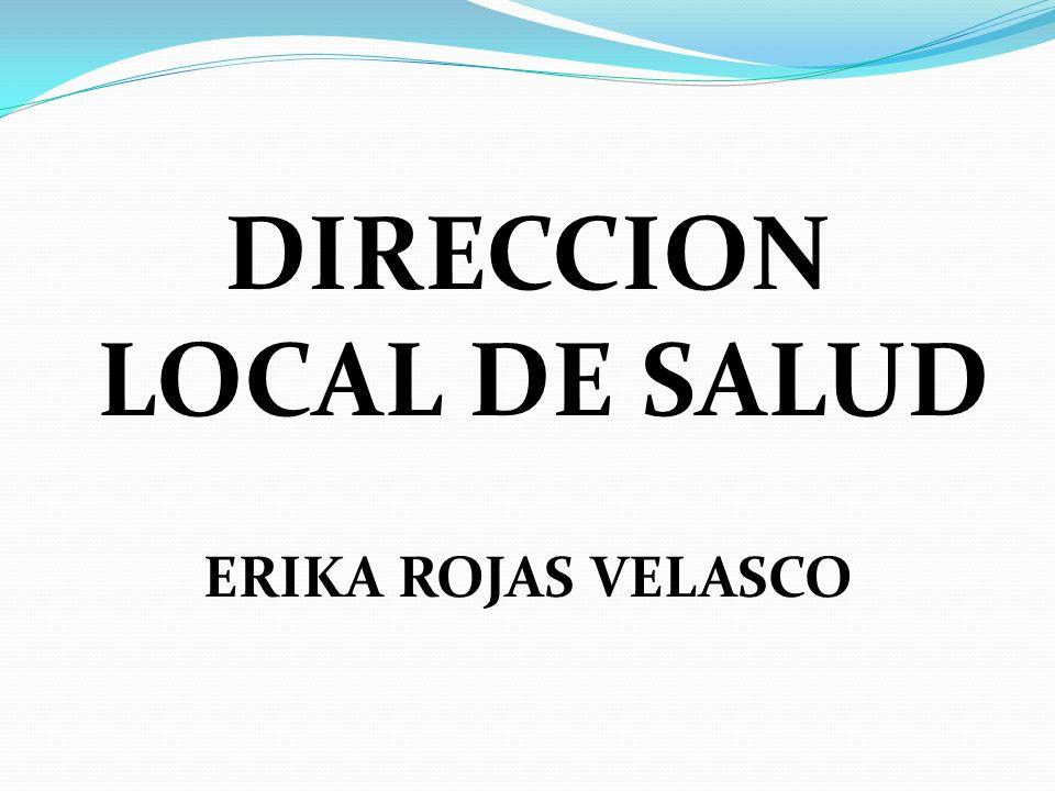DIRECCION LOCAL DE SALUD ERIKA ROJAS VELASCO