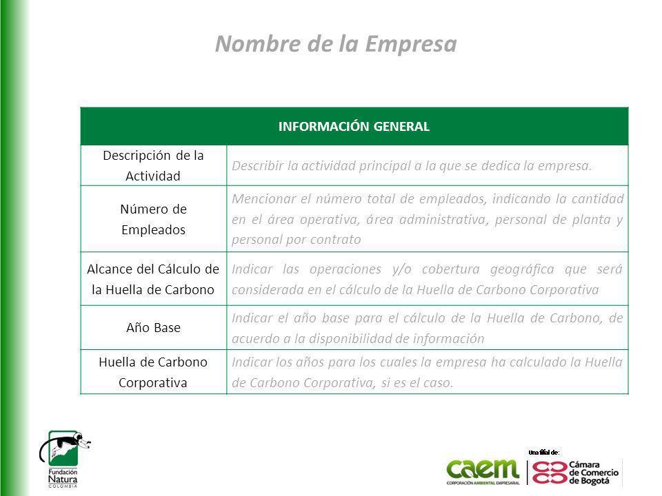 Nombre de la Empresa INFORMACIÓN GENERAL Descripción de la Actividad Describir la actividad principal a la que se dedica la empresa.