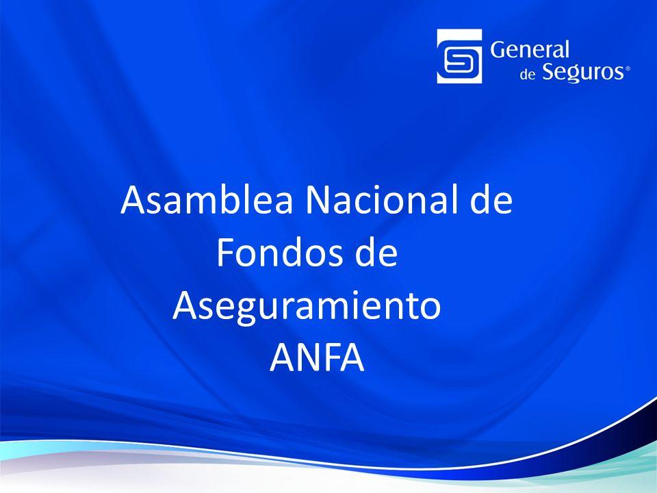 Asamblea Nacional de Fondos de Aseguramiento ANFA