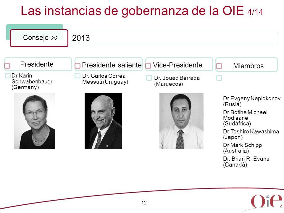 2013 Las instancias de gobernanza de la OIE 4/14 12 Consejo 2/2 Presidente Dr. Carlos Correa Messuti (Uruguay) Presidente saliente Dr. Jouad Berrada (