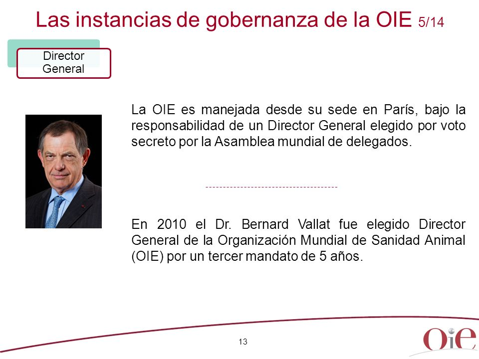 Las instancias de gobernanza de la OIE 5/14 13 Director General La OIE es manejada desde su sede en París, bajo la responsabilidad de un Director Gene