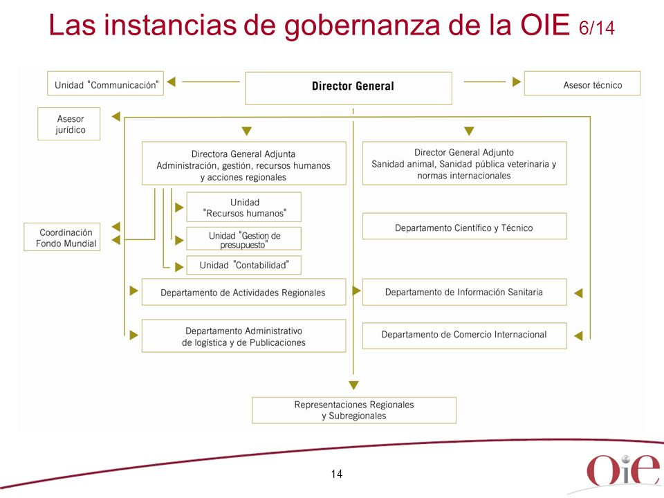 14 Las instancias de gobernanza de la OIE 6/14