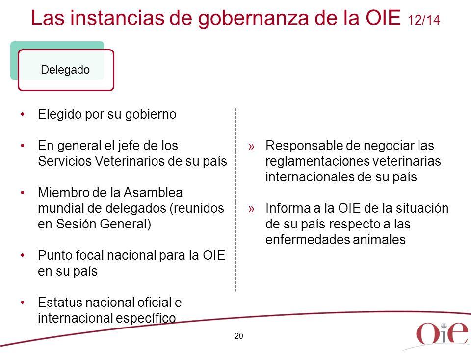 Las instancias de gobernanza de la OIE 12/14 20 Elegido por su gobierno En general el jefe de los Servicios Veterinarios de su país Miembro de la Asam