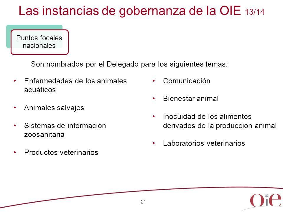 Las instancias de gobernanza de la OIE 13/14 21 Enfermedades de los animales acuáticos Animales salvajes Sistemas de información zoosanitaria Producto