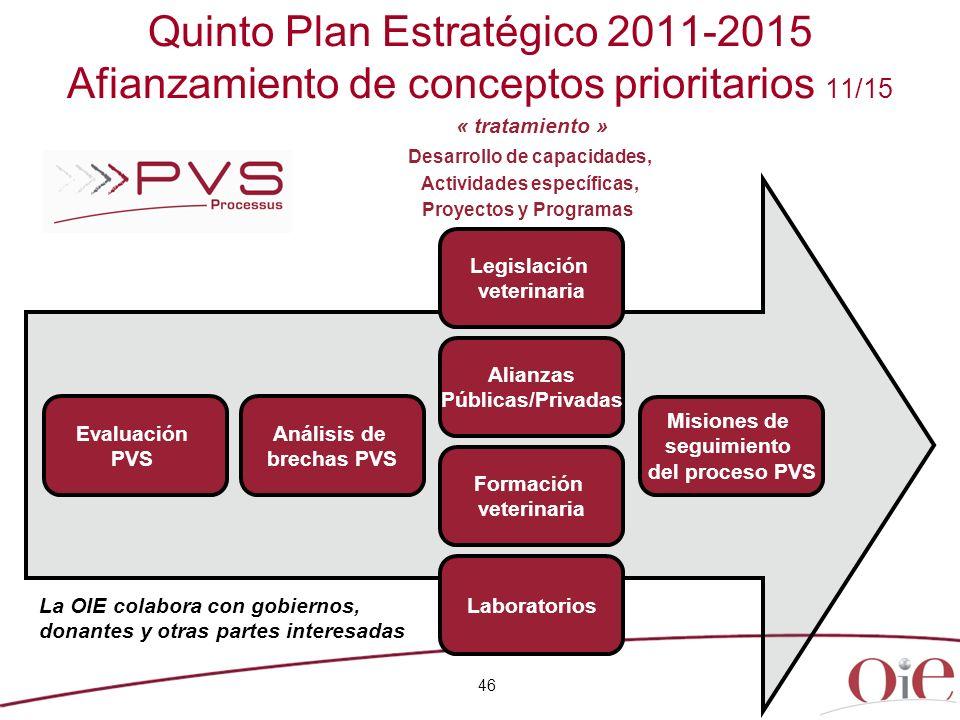 46 Quinto Plan Estratégico 2011-2015 Afianzamiento de conceptos prioritarios 11/15 Desarrollo de capacidades, Actividades específicas, Proyectos y Pro