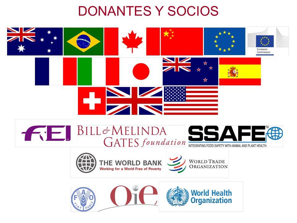 Las instancias de gobernanza de la OIE 9/14 Comisiones Regionales La OIE ha creado cinco Comisiones Regionales para tratar de los problemas científicos específicos que se presentan a sus Miembros en las varias regiones.