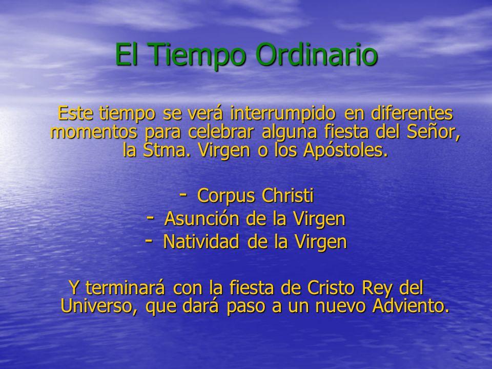 El Tiempo Ordinario Este tiempo se verá interrumpido en diferentes momentos para celebrar alguna fiesta del Señor, la Stma.