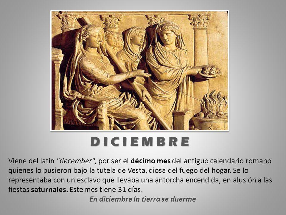 Viene del latín
