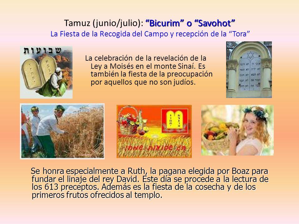 Bicurim o Savohot Tamuz (junio/julio): Bicurim o Savohot La Fiesta de la Recogida del Campo y recepción de la Tora La celebración de la revelación de