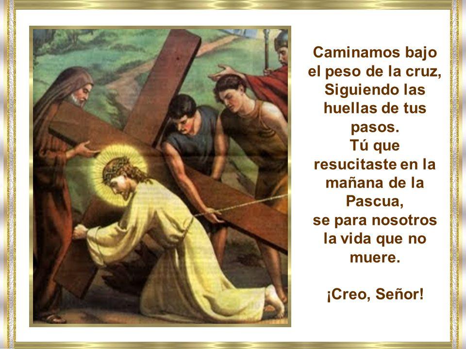 Con los pobres que están esperando en la puerta, Señor, te pido que: adauge nobis fidem (aumentes nuestra fe).