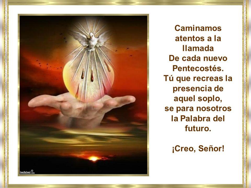 Con los humildes que quieren renacer, Señor, te rogamos: adauge nobis fidem (aumentes nuestra fe).