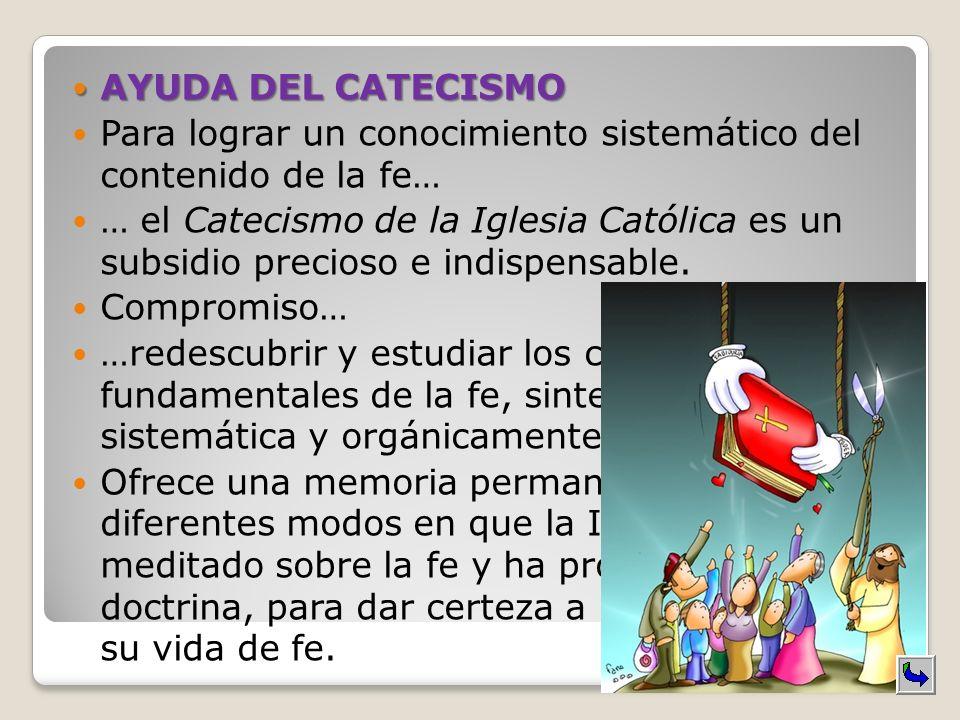 AYUDA DEL CATECISMO Para lograr un conocimiento sistemático del contenido de la fe… … el Catecismo de la Iglesia Católica es un subsidio precioso e in