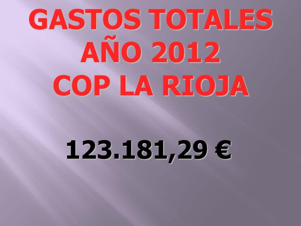 123.181,29 123.181,29 GASTOS TOTALES AÑO 2012 COP LA RIOJA