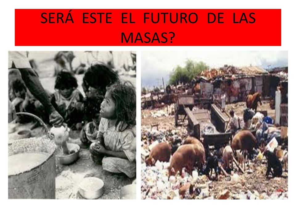 SERÁ ESTE EL FUTURO DE LAS MASAS?
