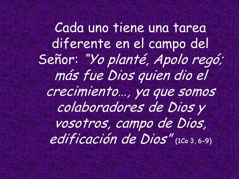 San Pablo saca una importante lección de los sucedido, dice que: tanto yo como Apolo, no somos más que diakonoi, simples ministros, a través de los cu