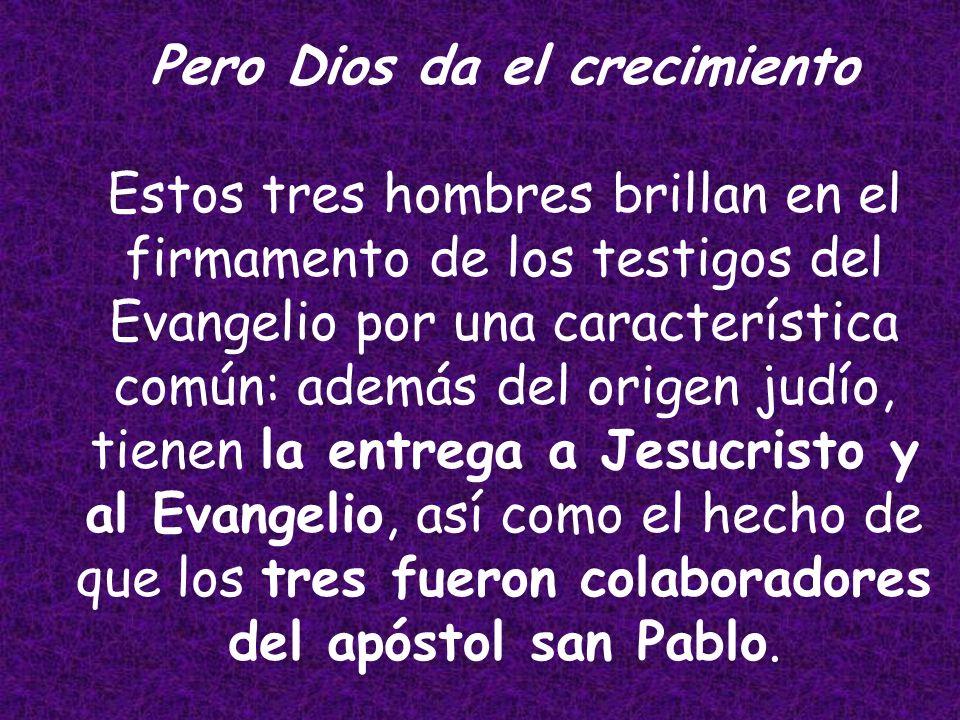 Cada uno tiene una tarea diferente en el campo del Señor: Yo planté, Apolo regó; más fue Dios quien dio el crecimiento…, ya que somos colaboradores de