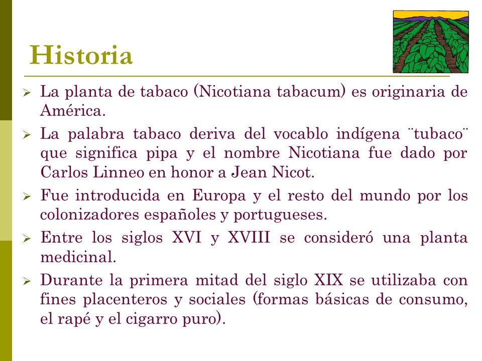 Historia La planta de tabaco (Nicotiana tabacum) es originaria de América. La palabra tabaco deriva del vocablo indígena ¨tubaco¨ que significa pipa y