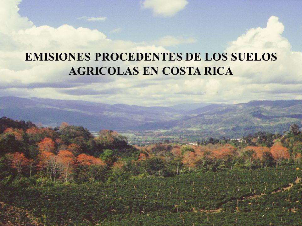 Factor de emisión total en las plantaciones de banano fue de: 4,61 kg N 2 O/ha año Factor de emisión