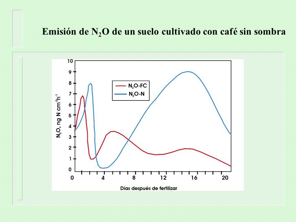 Resultados de las emisiones utilizando las guías del IPCC n Emisiones directas – 3,68 Gg N 2 O n Sistemas de manejo de estiércol – 2,03 Gg N 2 O n Emisiones indirectas – 2,25 Gg N 2 O Total de emisiones: 7.95 Gg