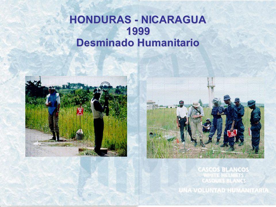 www.cascosblancos.org.ar Teléfono: (054) 11- 4310-2100 - Fax: (054) 11-4312-0152 Av. Leandro N. Alem 884 Piso 4 – Buenos Aires ARGENTINA